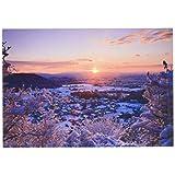 ピンナップ ポストカード 10+1枚 KM96 水野克比古 京都 嵯峨野 雪 初日の出