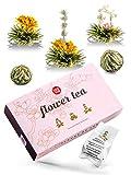 Teeblumen Geschenkset als Muttertagsgeschenk, schöner Erblühtee als Teeblume genießen, ein Geschenk für Frauen - von 108