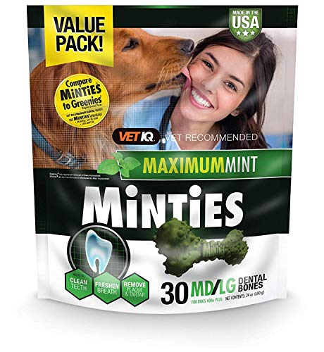 VetIQ Minties Dog Dental Bone Treats