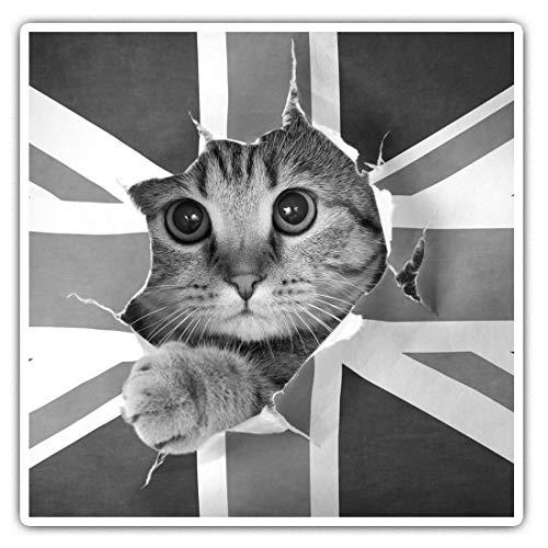 Impresionantes pegatinas cuadradas (juego de 2) 7,5 cm BW – Bandera de la bandera de Reino Unido lindo gato calcomanías divertidas para portátiles, tabletas, equipaje, reserva de chatarras, neveras, regalo genial #40956