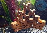 Salty Bee Ladrillo de arcilla XS – Escondite de gambas, Cáncer, decoración para acuario
