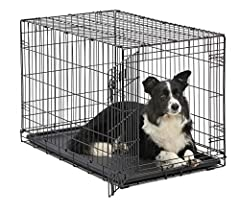 ICrate the 'All Inclusive Dog Crate' Includes Free divider panel, durable dog tray, carrying handle, 4 'roller' Feet to protect floors & Midwest quality Guarantee 1 year Warranty Medium / Large Single door folding dog crate ideal for Dogs w/ adult we...