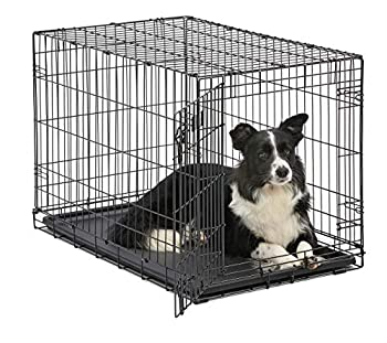Dog Crate MidWest ICrate 36 Inch Folding Metal Dog Crate w/ Divider Panel Intermediate Dog Breed Black