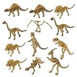 STOBOK Conjunto de 12 peças de bonecos de dinossauro Fóssil Esqueleto Dino Bones para meninos e meninas