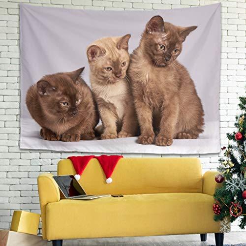 superyu Kitten - Colcha para colgar en la pared con decoración artística de la naturaleza, decoración del hogar para sala de estar, dormitorio, dormitorio, color blanco
