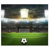 OULII Fondos Fotográficos Campo de Fútbol Copa Mundial para Estudio Fotógrafo Profesional Fondo de Pared 90x150cm