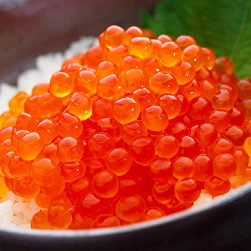 訳あり OWARI いくら 醤油漬け 北海道産 鮭卵 冷凍 2kg (500gx4パック)