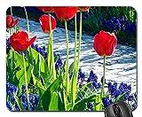 Mauspad Garten-Blumen Bunte Tulpen Traubenhyazinthe Pfad Gaming Mauspad Mit Motiv Office Mauspad Langlebig Mousepads Matte Für Cadeau Zuhause Büro 25X30Cm
