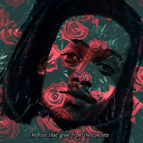 The Rose That Grew from the Concrete [Explicit]
