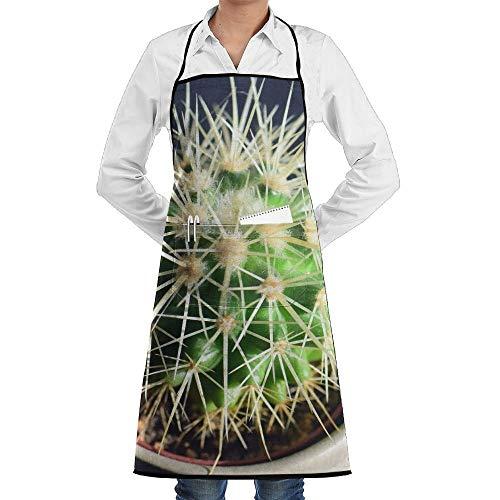 dfgjfgjdfj Desert Cactus Potted Schürze Lace Adult Mens Womens Chef...