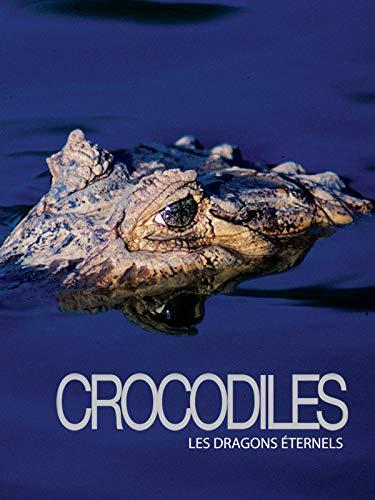 Crocodiles, les dragons éternels