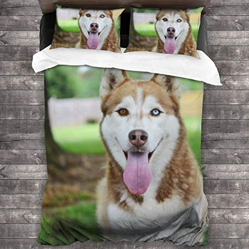 3-Piece Bedding Set Adult Brown And White Siberian Husky Dog 100% Natural Polyester,1 Duvet Cover And 2 Pillowcases,Ultra Soft And Breathable