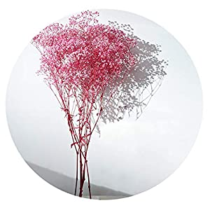 Silk Flower Arrangements Solardragon 100G Home Decor Dried Flower Sky Star Natural Dried Baby Breath Flowers Bouquets-in Artificial & Dried Flowers from Home & Garden,Pink Color