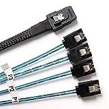 BORSVAEN Mini SAS to SATA Cable (SFF-8087 36Pin Male to 4 SATA 7Pin Female),Mini SAS Host to 4 SATA Target Hard Disk Data Cable - 0.5M