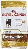 ROYAL CANIN Rottweiler 31 Junior 3 kg, 1er Pack (1 x 3 kg)
