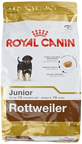ROYAL CANIN Rottweiler 31 Junior 3 kg, 1er Pack (1 x 3 kg)