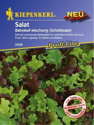 Kiepenkerl Pflücksalat Salat Babyleaf-Mischung