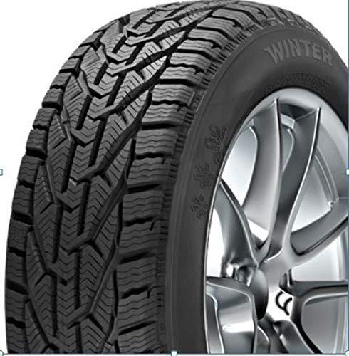 Orium 55276 Neumático Winter 225/45 R17 94V para Turismo, Invierno