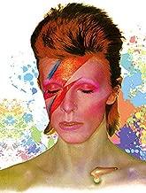 David Bowie. Aladdin Sane Album cover. 3D Holographic Poster by Eyecandy 3D. Fan Art. Unframed Print