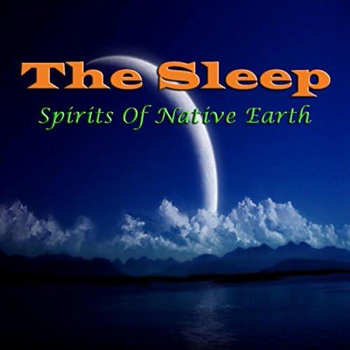 Spirits of Native Earth