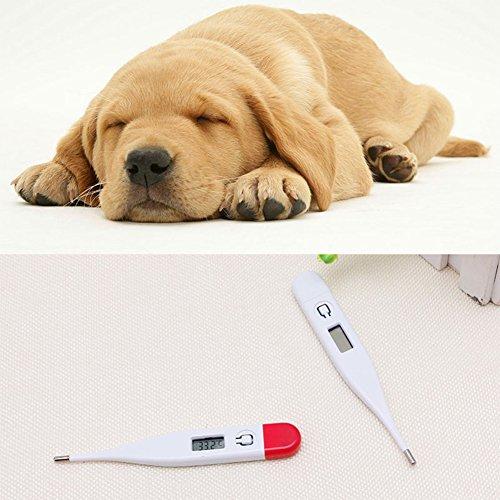 Termómetro Para Perros  marca FairOnly