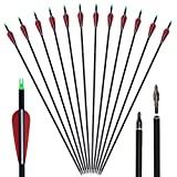 Huntingdoor 30' Archery Carbon Target Arrows Hunting Arrows...