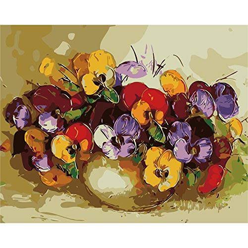 Jinaomy DIY Ölgemälde für Erwachsene Kinder Malen Nach Zahlen Enthält Acrylfarben und 3 Pinsel Leinwand Kunst Dekoration Ohne Rahmen 16x20 Zoll / 40x50 cm Mehrfarbige Vase