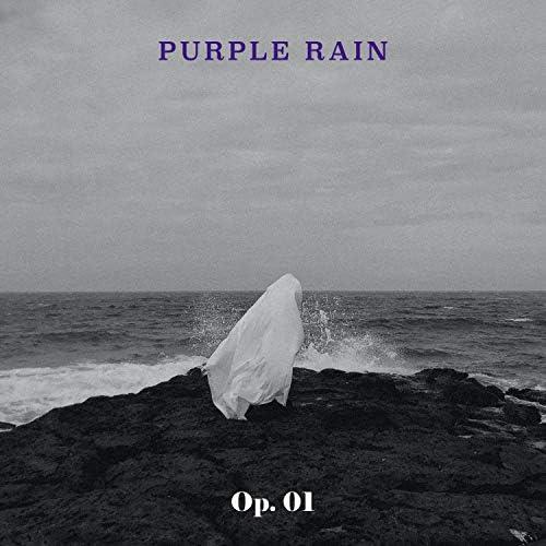 Purple Rain 퍼플레인