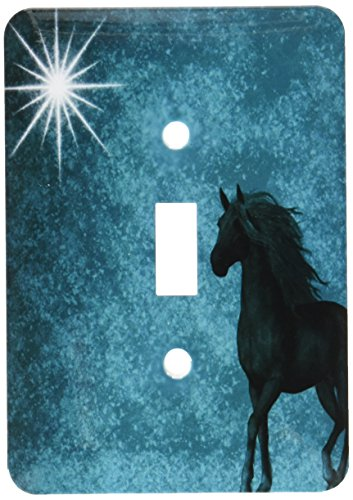 3dRose lsp_164692_1 Beautiful Horse Aqua Grunge Sky Light Switch Cover