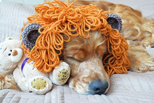 Hund Snood Schal Löwe Winter Hundezubehör Ohrbedeckungen Tier Hut Halswärmer Geschenk Gestrickter Nackenwärmer Haustier Krawatte für Welpen Mütze