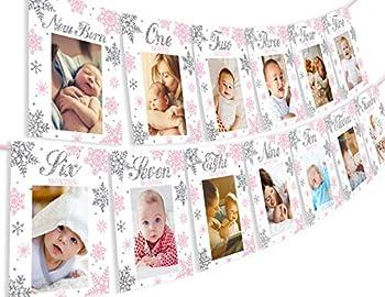Pink Onederland Photo Banner - Milestone Monthly Newborn to 12 Months Photo Banner for Winter Frozen 1st Birthday Decorations