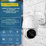 Cámara de vigilancia domo exterior WiFi de largo alcance