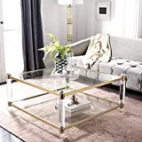 Safavieh Couture Collection Isabelle Bronze Acrylic Coffee Table