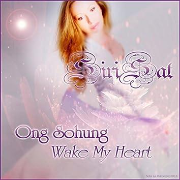 Wake My Heart - Single