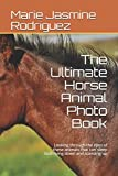 The Ultimate Horse Animal Photo Book: Looking through the eyes of these animals that can sleep both lying down and standing up