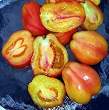 Polish Pastel Tomato 5 Seeds - Very Rare! Acid Free!