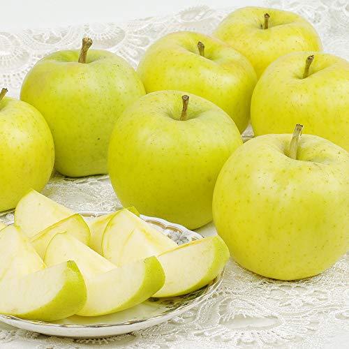国華園 食品 りんご 青森産 とき 10kg 1箱