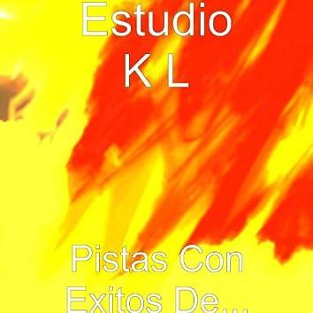 Pistas Con Exitos De...