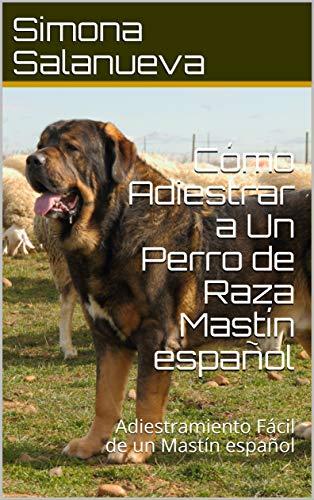 Cómo Adiestrar a Un Perro de Raza Mastín español : Adiestramiento Fácil de un Mastín español