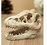 XIGUI Acuario Decoración Resina Emulacional Cráneo - dinosaurio cráneo esqueleto ornamento-tanque de peces pequeño cráneo acuario decoración cueva paisaje mascota reptil casa