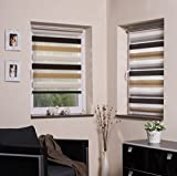 Duo ZTC1 - Estor enrollable (opaco, para ventana, de 45 x 160 cm a 98 x 160 cm, 3 colores), transparente
