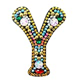 Llavero con forma especial de pintura de diamantes, para mujer, colgante de pintura de diamantes, para manualidades, llavero, decoración de bolsa y llavero (Y)