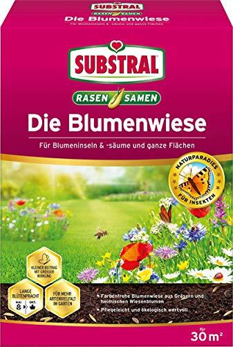 Substral Die Blumenwiese Rasen- & Blumensamen für ein attraktives Bienen- und Nützlingsparadies, 300 g