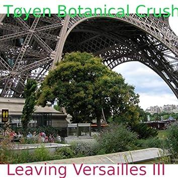 Leaving Versailles III