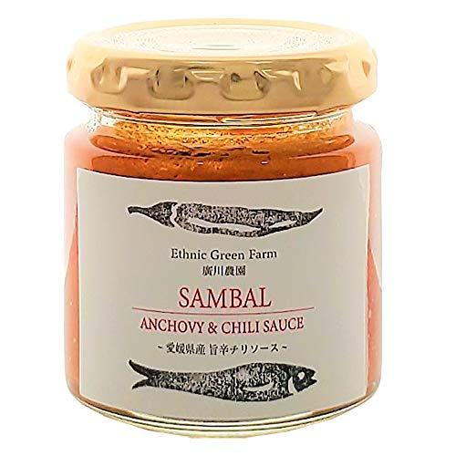 サンバルソース 80g×2瓶 ISフーズ 東南アジア料理に用いられる辛味調味料でチリソースの一種
