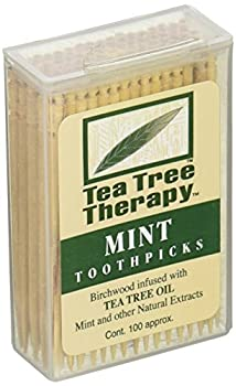 Tea Tree Therapy Mint Toothpicks 100 Ct  Pack of 1