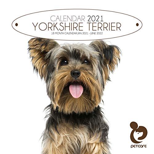 Yorkshire Terrier 2021 - Calendario quadrato per cani per la cura degli animali domestici, con calendario 2022 per 6 mesi, ideale come regalo di Natale o di compleanno