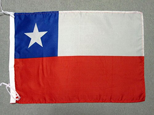 AZ FLAG Flagge Chile 45x30cm freiner Polyester - CHILENISCHE Fahne 30 x 45 cm - flaggen