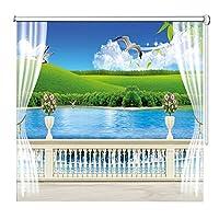 すだれ ロールスクリーン 自宅/オフィス/ホテルのブラックアウトローラーブラインド、プリティビュー、 防水防塵PVCカーテン、 組み立てが簡単、サイズをカスタマイズ可能 (Size : W85×L250cm)