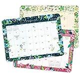 """Katie Daisy 2020 - 2021 Desk Pad Calendar (17-Month Aug 2020 - Dec 2021, 18.75"""" x 13.5"""")"""